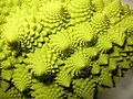 Romanesco Broccoli detail - (4).jpg