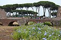 Rome - 2015 - panoramio (11).jpg