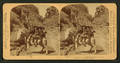 Room for one more, Williams Canyon, Colorado, U.S.A, from Robert N. Dennis collection of stereoscopic views 9.png