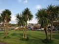 Rothesay gardens - geograph.org.uk - 799345.jpg