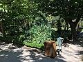 Royal Botanical Garden in Madrid 12.jpg