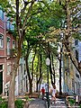 Rua Cidade de Manchester - Lisboa - Portugal (51065544343).jpg