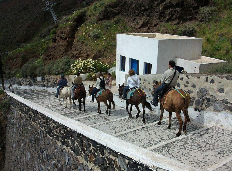 File:Rucs portant turistes a Santorí.JPG
