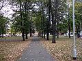 Rudnik nad Sanem - park (02).jpg