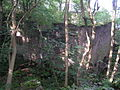 Ruined watermill, Phoside - geograph.org.uk - 49610.jpg