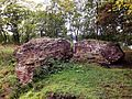 Ruiny Zamku w Wąbrzeźnie.jpg
