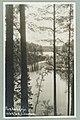 Runebergin kumpu, W. A. Sihvonen 1910s–1930s PK0214.jpg