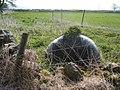 Rural grow-bag - geograph.org.uk - 1266186.jpg
