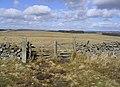 Rural landscape - geograph.org.uk - 358383.jpg