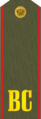 Russia-army-private.png