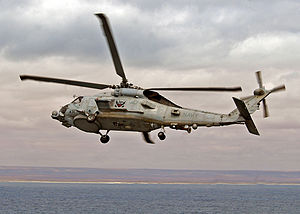 SH-60B vertical replenishment - 081017-N-1082Z-013.jpg