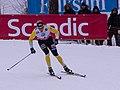 SM 2013 skidsprint herrar kvartsfinal 1 02.jpg