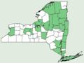Sagittaria graminea ssp graminea NY-dist-map.png