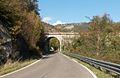 Salta Cavallo - faentina bridge.jpg