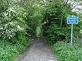 Saltergill Lane - geograph.org.uk - 431958.jpg