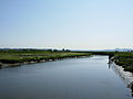 Samish-River.jpg
