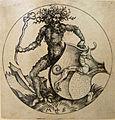 Sammlung Ludwig - Artefakt und Naturwunder-Schongauer-Wilder Mann80410.jpg