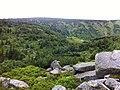 Samotnia - panoramio.jpg