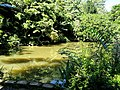 San Juan Botanical Garden - DSC07000.JPG