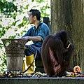 Sandakan Sabah Sepilok-Orangutan-Rehabilitation-Centre-10.jpg