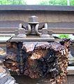 Schienenbefestigung in Holzschwelle.JPG