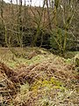 Scots Dyke crosses the Glenzier Burn - geograph.org.uk - 353330.jpg