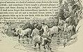 Scribner's magazine (1887) (14778885231).jpg