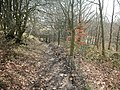 Sculpture Trail - geograph.org.uk - 143209.jpg