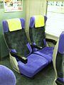 Seat of JR E653.JPG