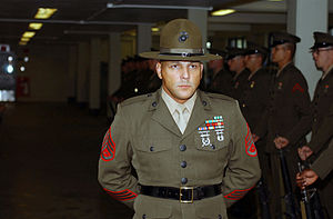 Drill instructor - A U.S. Marine Senior Drill Instructor supervises the inspection of his platoon