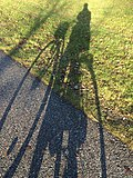 Shadow of a bike.jpg