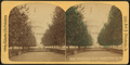 Shady walk to the Capitol, Washington, D.C, by H. L. Roberts & Co..png