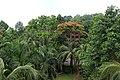 Shahjalal Hall at University of Chittagong (11).jpg