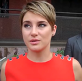 Shailene Woodley Red Carpet Interview 2014.png
