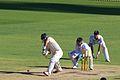 Shane Watson batting, 2013.jpg