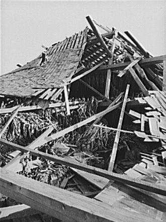1938 New England hurricane - Tobacco barn in Connecticut, 1938, by Sheldon Dick
