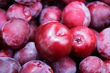 pruine sur prunes