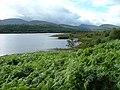 Shoreline of Loch Garry - geograph.org.uk - 233488.jpg