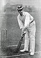 Sir Tim O' Brien cricketer.jpg
