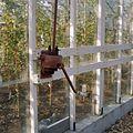 Slinger voor het openen van ramen in één van de rozenkassen - Aalsmeer - 20404537 - RCE.jpg