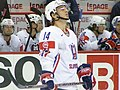 Slovenia VS USA at the IIHF World Hockey Championship 2008 - Boris Pretnar.jpg
