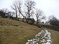 Snowy footpath - geograph.org.uk - 1727863.jpg