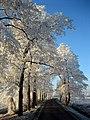 Soest, Netherlands - panoramio (30).jpg