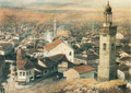 Sofia-oberbauer.png