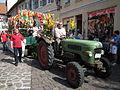 Sommertagszug Ladenburg Motivwagen.JPG