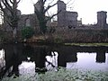 St Mary's Priory and the Pond in winter - geograph.org.uk - 1198098.jpg