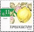 Stamps of Tajikistan, 005-05.jpg