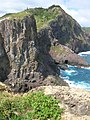 Starr-050404-5384-Portulaca oleracea-habit-Mokeehia-Maui (24648118621).jpg
