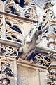 Stephansdom Vienna gargoyle 07.jpg