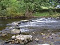 Stepping stones over the Swale - geograph.org.uk - 1510892.jpg